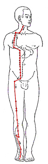 Stomach Meridian Flow - www.natural-health-zone.com