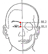 Bladder Meridian Acupuncture Points - www.natural-health-zone.com