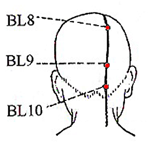 Bladder Meridian Acupuncture Points
