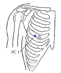 Pericardium Meridian Points - www.natural-health-zone.com