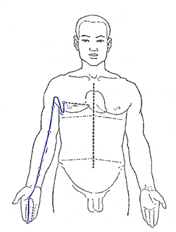 Pericardium Meridian Flow - www.natural-health-zone.com