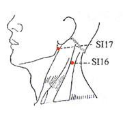www.natural-health-zone.com - Small Intestine Meridian